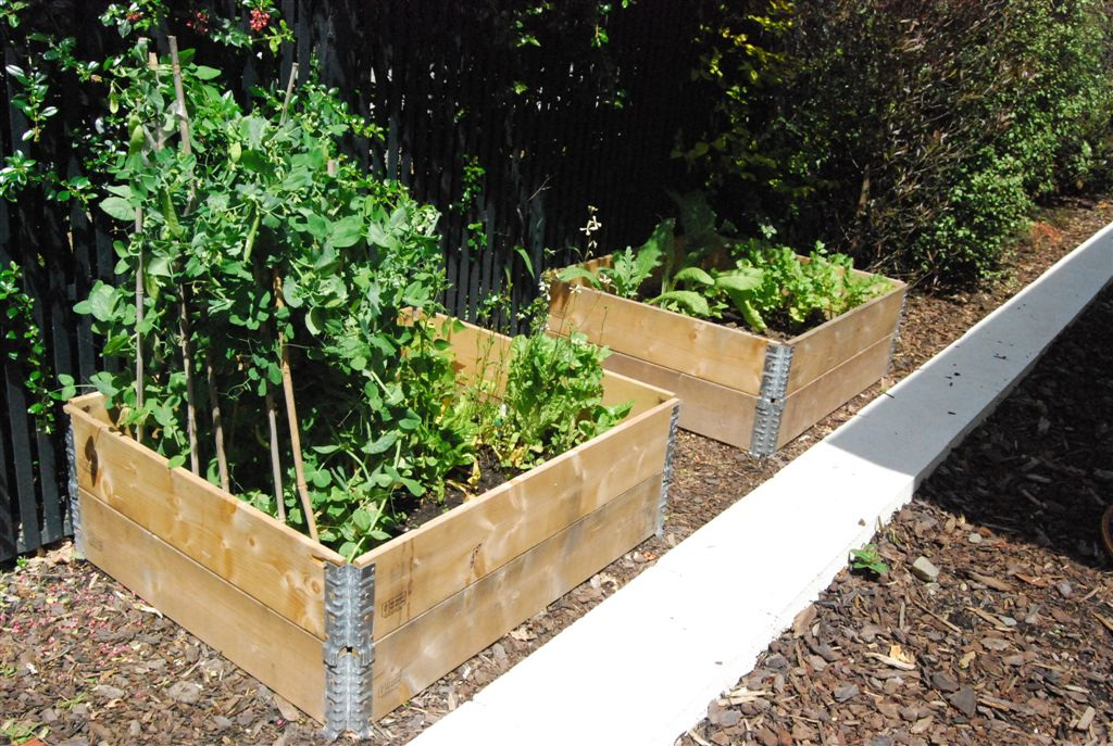 4 pallet collars used to build 2 raised garden beds